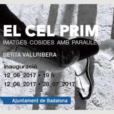 EL-CEL-PRIM_Horit